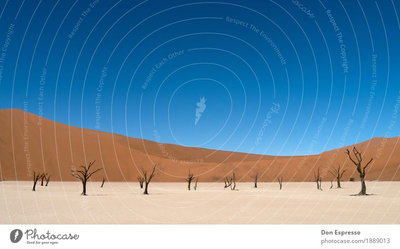 Nature Vacation & Travel Landscape Loneliness Far-off places Warmth Environment Time Freedom Sand Tourism Gloomy Adventure Transience Dry Desert