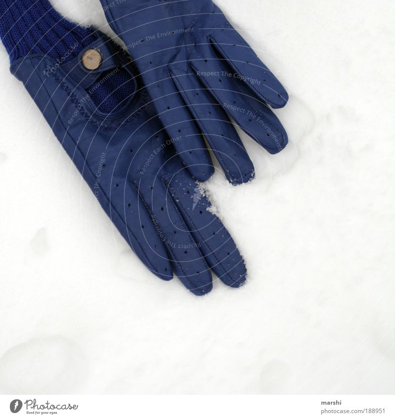 Nature White Blue Winter Loneliness Cold Snow Style Ice Weather Search Frost Lie Doomed Hip & trendy Gloves
