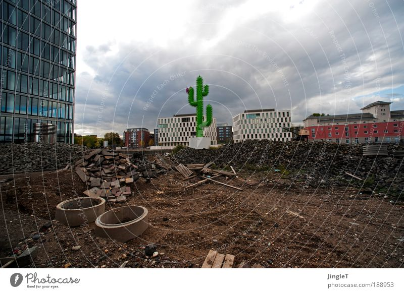 Green Red Clouds Gray Building Brown Metal Earth Modern Construction site Cologne Landmark Muddled Gap Cactus Untidy