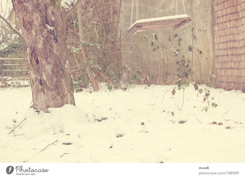 Cold Snow Garden Ice Weather Frost Swing