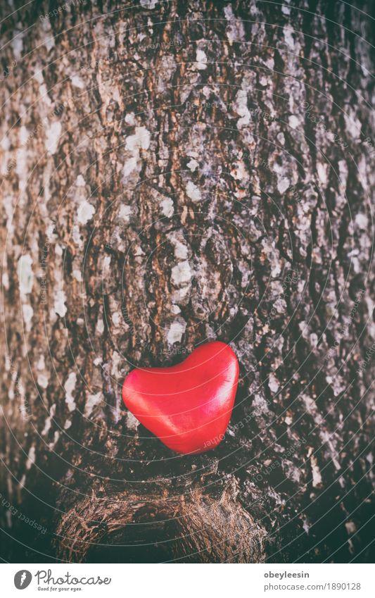 valentine's day love heart, vintage tone Lifestyle Style Design Healthy Valentine's Day Art Artist Adventure Colour photo Multicoloured Morning