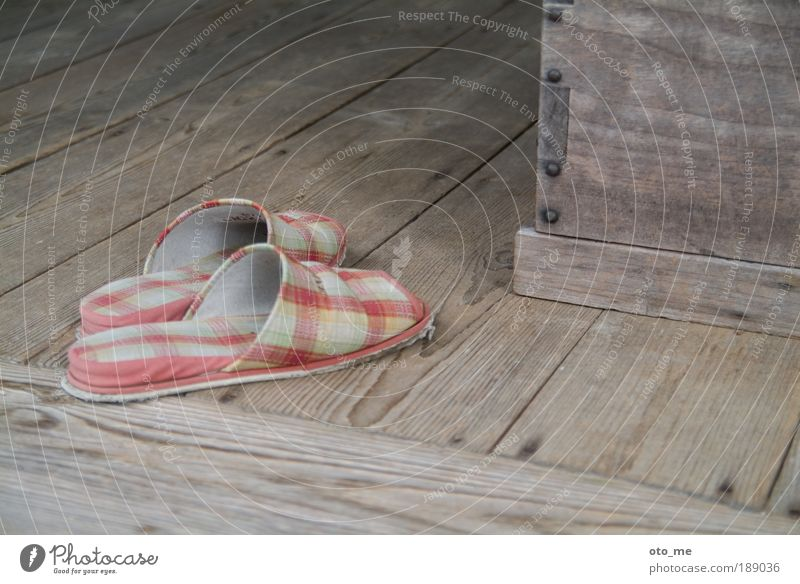 housekeeping Slippers Wood Wooden floor Checkered Old Shabby Shuffle Gray Colour photo Shoe shop Footwear faded