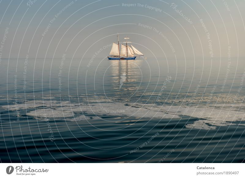 Enjoy when time stands still Joy Freedom Summer vacation Sailing Water Sky Horizon Beautiful weather North Sea Sailing ship Glittering To enjoy To swing Elegant