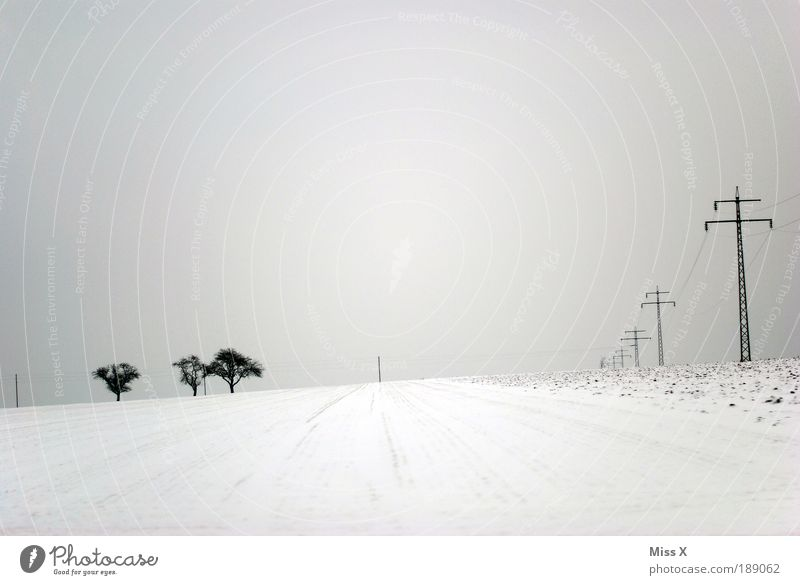 Tracks in the snow Winter Snow Winter vacation Hiking Bad weather Ice Frost Infinity Bright Cold Electricity pylon Tree Field Loneliness Black & white photo