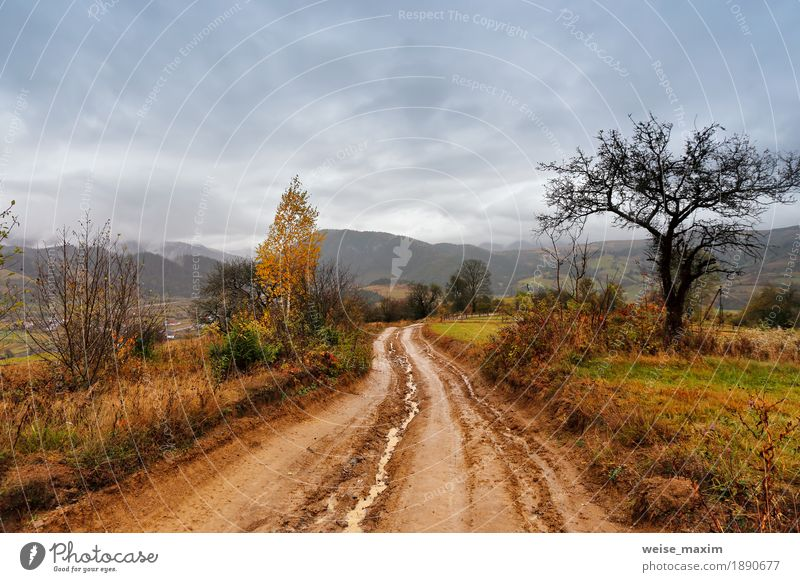 Muddy ground after rain in mountains. rural dirt road Vacation & Travel Tourism Trip Adventure Far-off places Mountain Nature Landscape Earth Sky Clouds Autumn