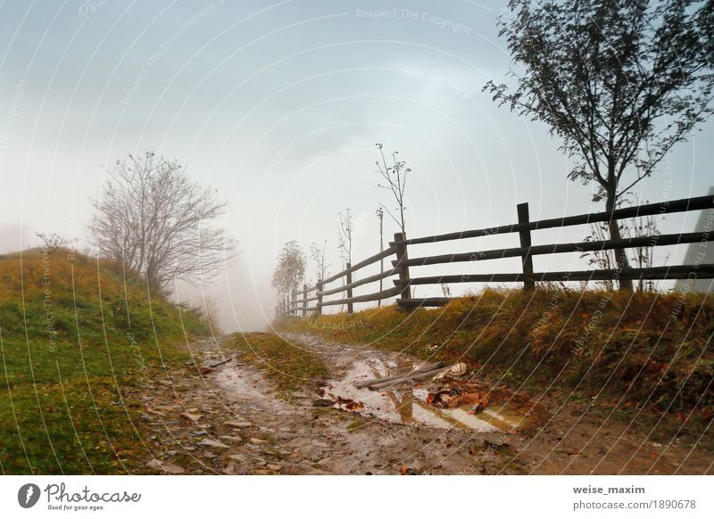Muddy ground after rain in Carpathian mountains. Extreme path Vacation & Travel Trip Adventure Mountain Nature Landscape Sky Clouds Autumn Weather Storm Fog