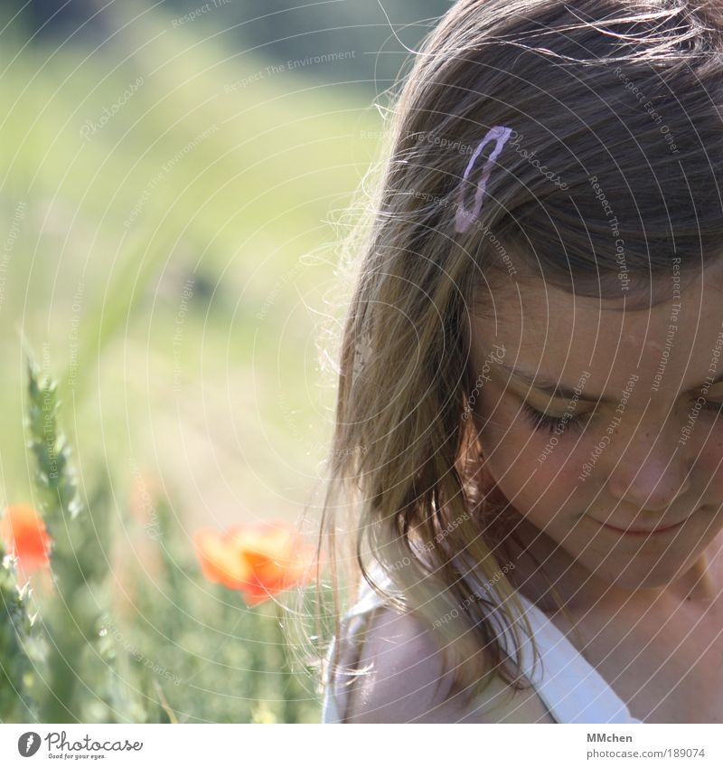 Human being Child Nature Girl Green Plant Red Summer Face Calm Grass Dream Head Think Landscape Contentment