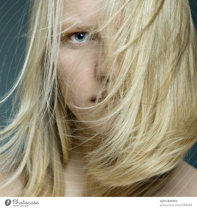 hair Feminine Young woman Youth (Young adults) Hair and hairstyles Eyes Nose Blonde Long-haired Beautiful Soft Resolve Looking Flying Movement Strand of hair