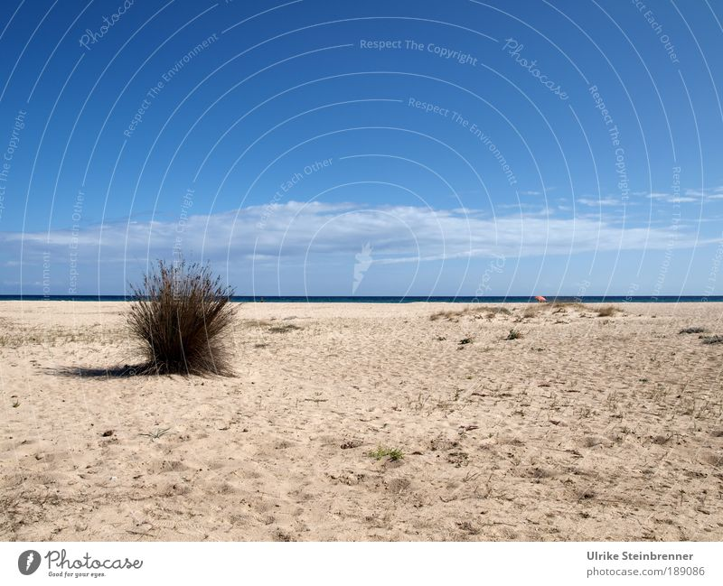 Empty beach in front of sea line with small, lonely parasol Relaxation Calm Vacation & Travel Sunbathing Beach Ocean Island Landscape Plant Sand Air Water Sky