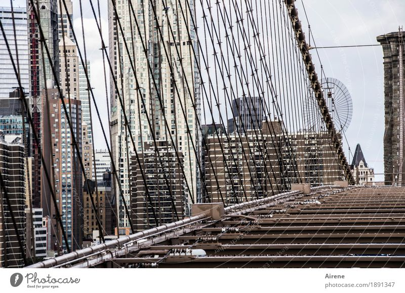 wire entanglement New York City Americas Town Downtown Skyline High-rise Bridge Suspension bridge Facade Prop Rope Steel cable Wire cable Crossbeam