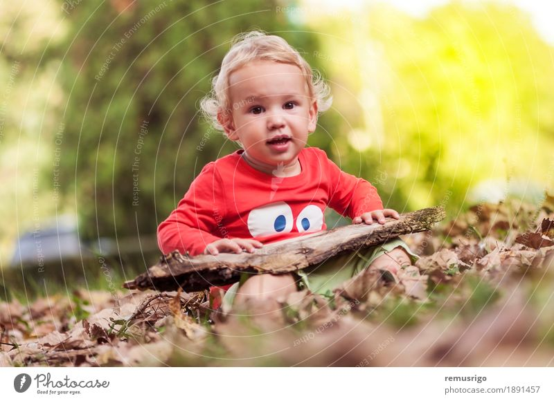 Child playing in the leaves Joy Happy Leisure and hobbies Playing Human being Baby Toddler Boy (child) Infancy Nature Autumn Leaf Park Happiness Small Cute