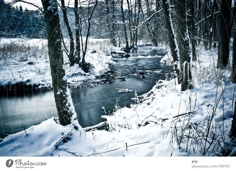 -7° Environment Nature Landscape Water Winter Ice Frost Snow Tree Brook River Valley Clearing Forest Grief Loneliness Calm January February Relaxation