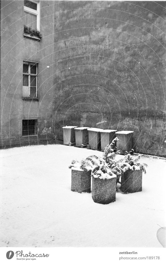 Winter Cold Snow Window Wall (barrier) Concrete Trash Backyard Courtyard Trash container Flowerpot Foliage plant Tub Copy Space Fire wall Virgin snow