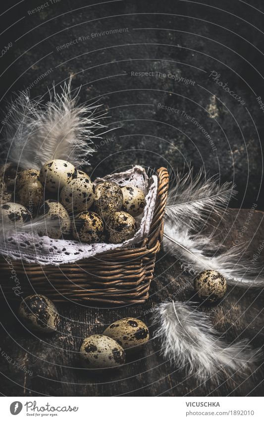 Quail eggs in basket on dark background Style Design Living or residing Table Easter Nature Tradition quail Nest Egg Easter egg nest Easter gift Dark Rustic