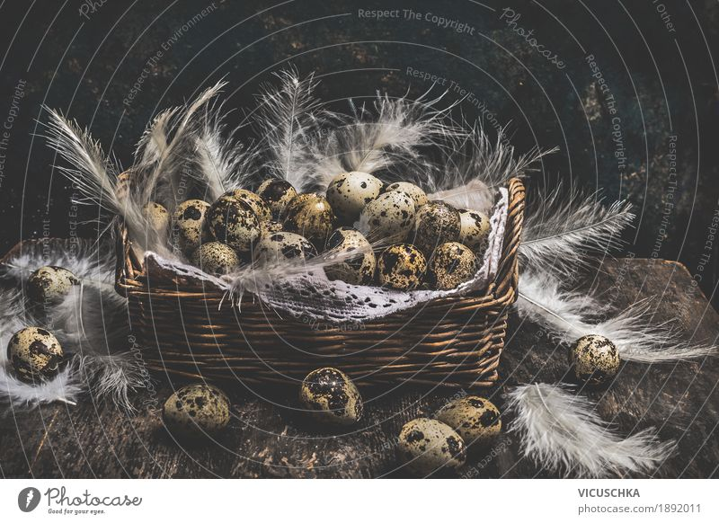 Basket with quail eggs and feathers Style Design Living or residing Decoration Feasts & Celebrations Easter Nature Yellow Nest Symbols and metaphors Vintage Egg
