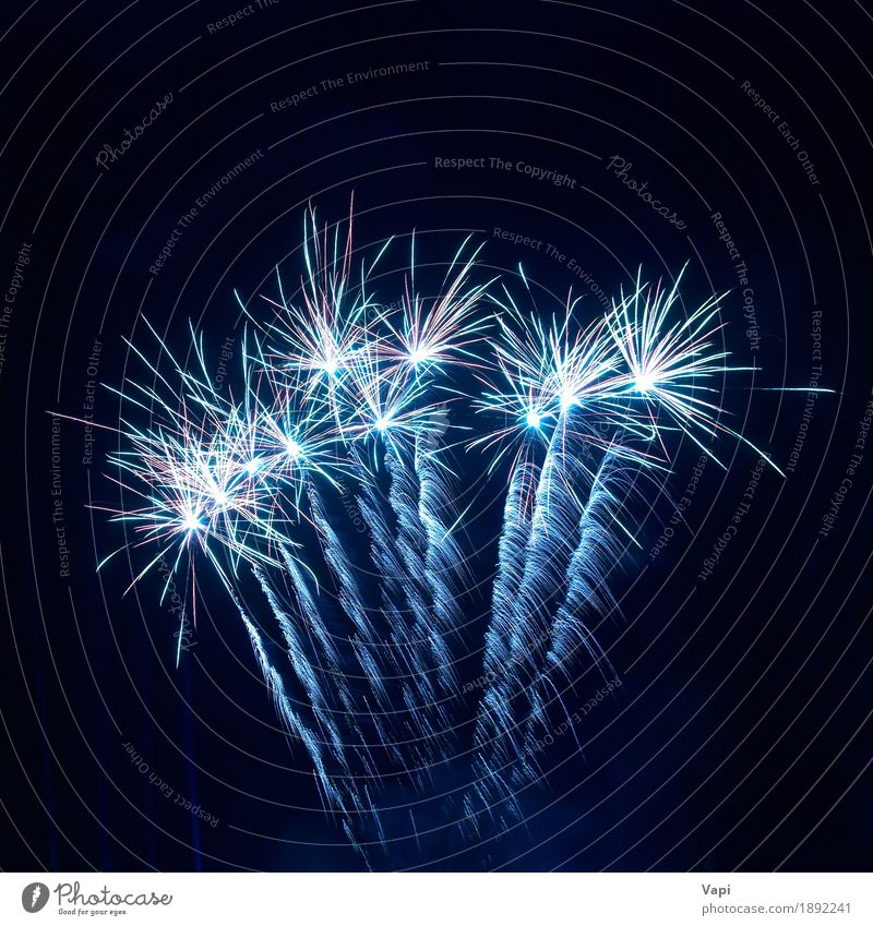 Colorful fireworks on the black sky Sky Blue Christmas & Advent Colour White Joy Dark Black Art Freedom Feasts & Celebrations Party Bright New Shows Event