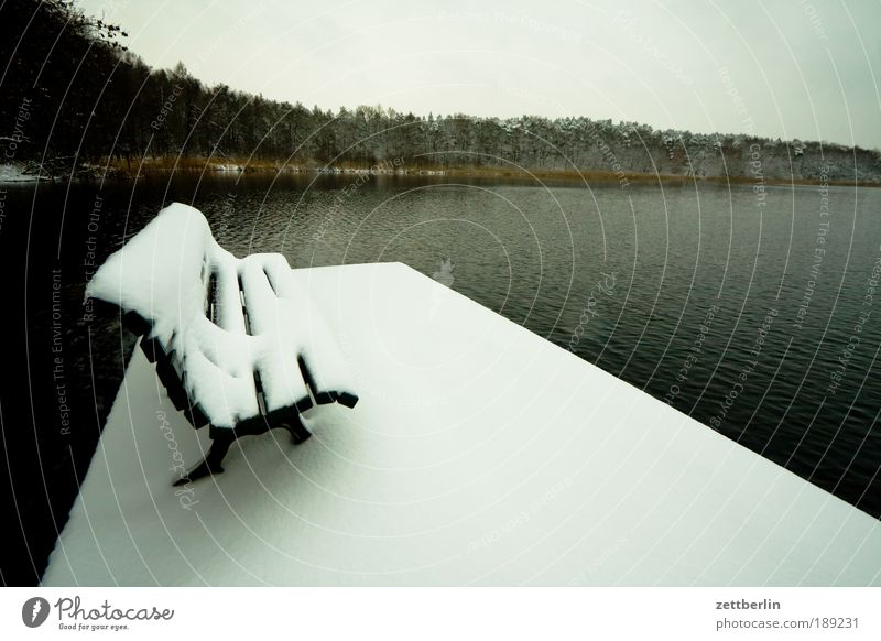 snow at the lake December Snow Snow layer Virgin snow Bench Empty Expressionless Deserted Free Calm Lake Water Surface of water Coast Lakeside Forest Footbridge