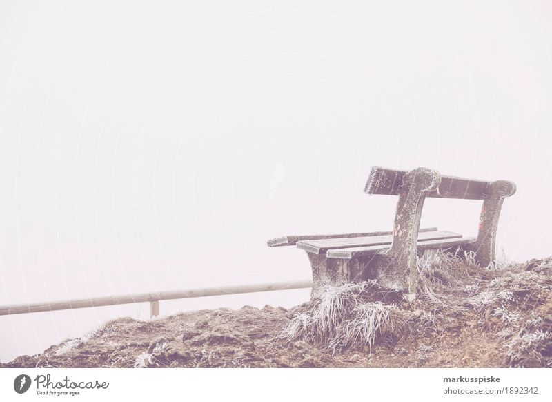 outlook bench Expedition Winter Nature Plant Discover Looking adventure autumn colorful countryside crystal case flower forzen fresh green ground hiking natural