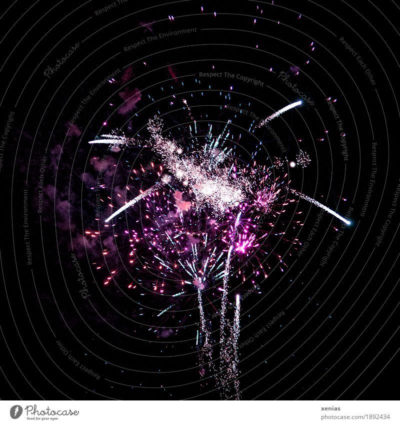 violet fireworks Sparkling wine Prosecco Night life Party Event Feasts & Celebrations Sky Night sky Stars Smoke Flying Violet Joy Explosion Pyrotechnics