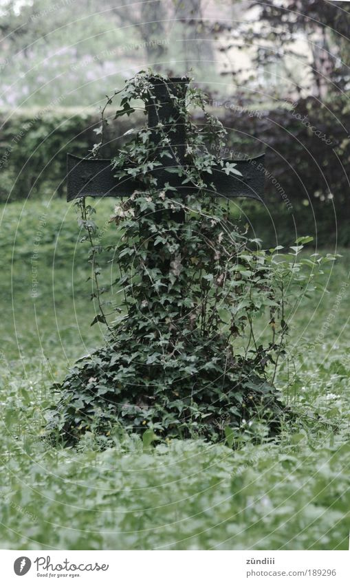 Old Loneliness Life Death Sadness Moody Metal Grief Growth Sign Crucifix Cemetery Tendril Ivy Overgrown