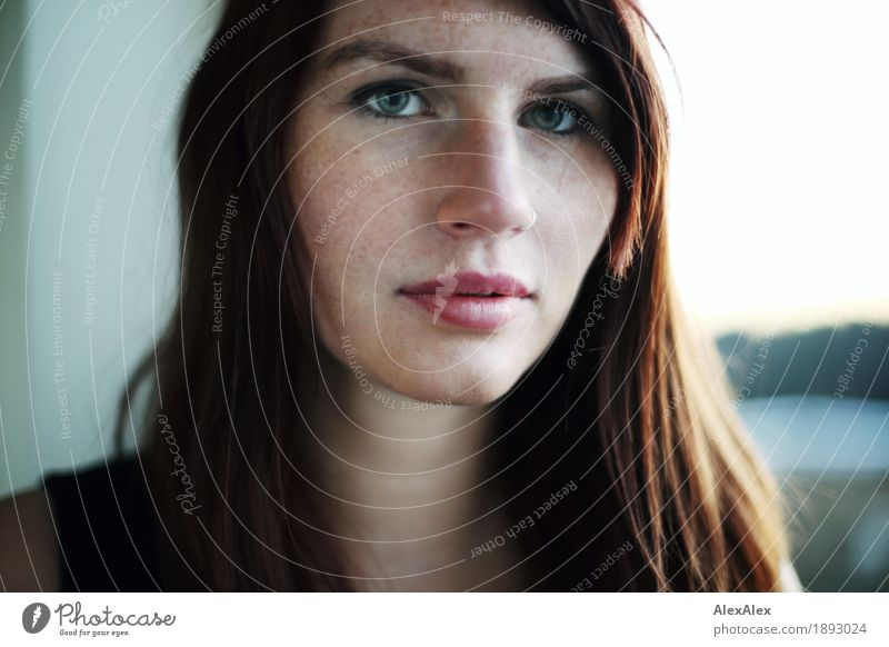 point by point Beautiful Face Window Young woman Youth (Young adults) Freckles 18 - 30 years Adults Horizon Beautiful weather T-shirt Brunette Long-haired