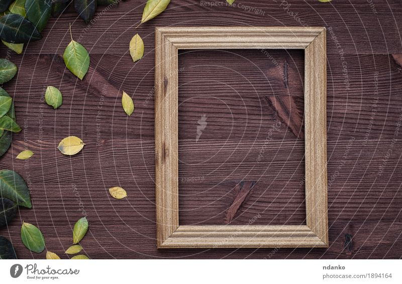 Empty wooden frame on brown wood surface Design Decoration Table Blackboard Plant Autumn Leaf Places Wood Old Dirty Fresh Retro Brown Yellow Green background
