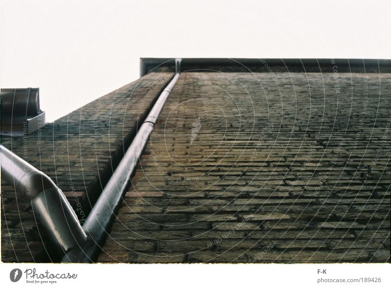 Old Green Black Dark Cold Wall (building) Architecture Gray Building Wall (barrier) Sadness Brown Dirty Facade Wet Tall