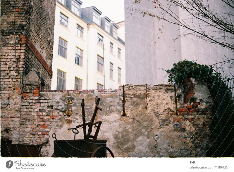 backyard Garden Capital city Deserted House (Residential Structure) Building Wall (barrier) Wall (building) Facade Old Authentic Dirty Historic Broken Retro