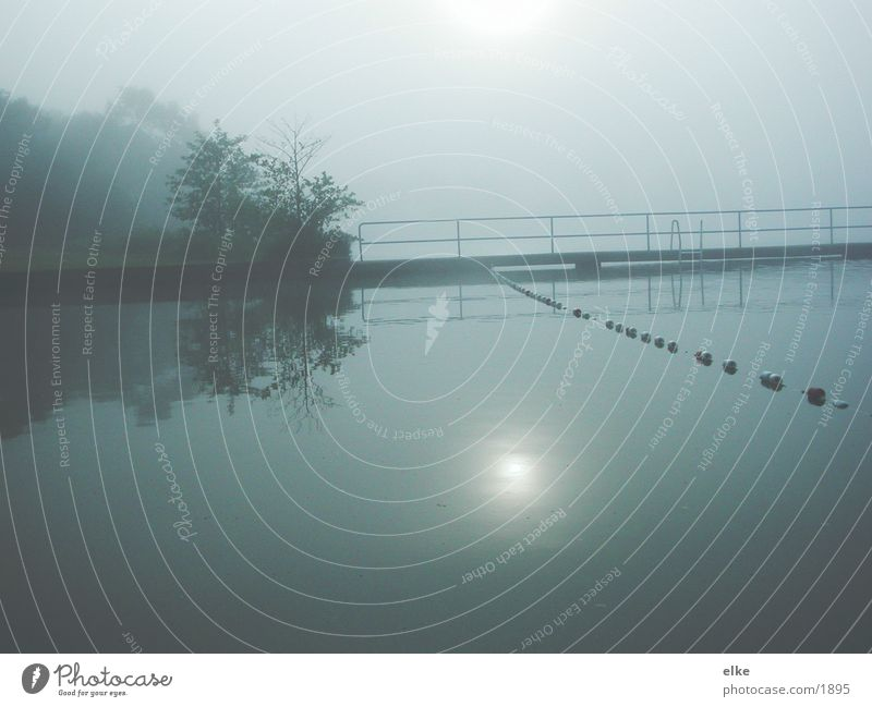 break of dawn Lake Footbridge Tree Romance Water