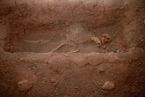 Skeleton in the grave Human being Life Head Creepy Grief Death Fear War Grave buried bury Peru South America Anatomy Paddle Devil Excavation Archeology