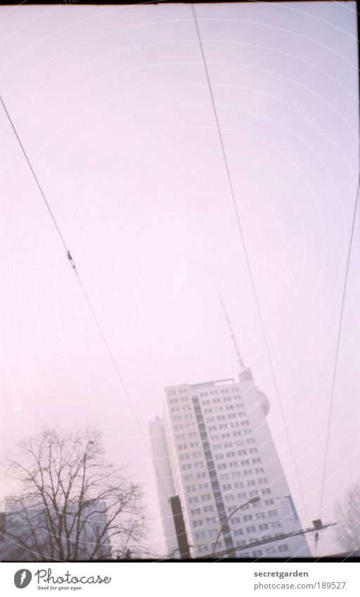Tree Winter Autumn Architecture Building Line Contentment Pink Flat (apartment) High-rise Kitsch Analog Landmark Beautiful weather Hide