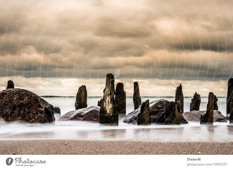 Sky Nature Old Water White Ocean Landscape Clouds Beach Black Environment Coast Wood Stone Brown Sand
