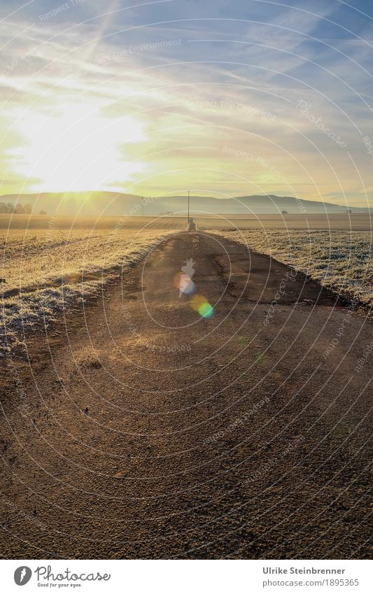 In the morning on the dirt road Sunbathing Winter Hiking Nature Landscape Plant Sky Clouds Horizon Beautiful weather Ice Frost Grass Field Hill Sulz-Holzhausen