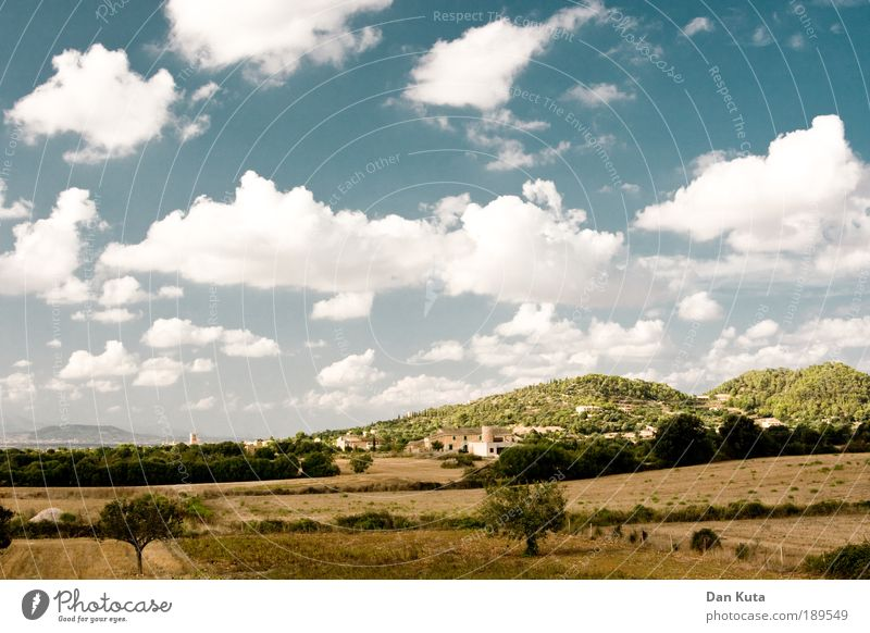 Nature Spain Beautiful Sky Sun Summer Vacation & Travel Clouds Meadow Freedom Warmth Landscape Field Happiness Island