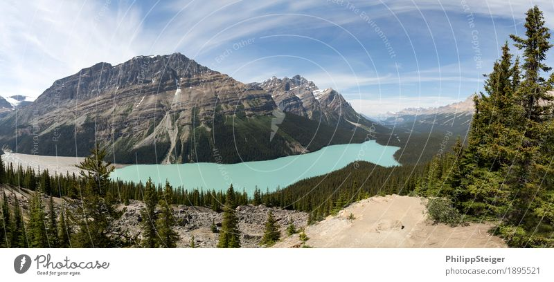 Peyto Lake Environment Nature Landscape Plant Sand Clouds Summer Beautiful weather Tree Spruce Coniferous trees Mountain River Discover Hiking Blue Turquoise