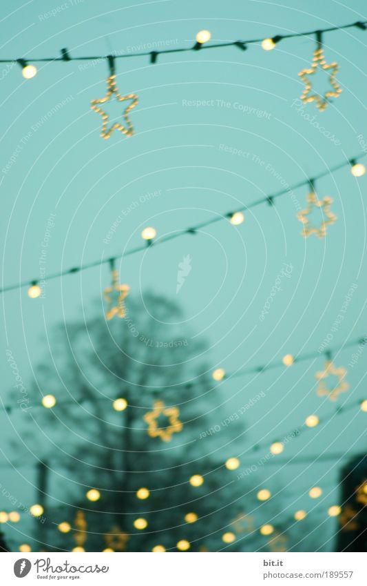 Christmas & Advent Sky Winter Lamp Moody Lighting Feasts & Celebrations Glittering Stars Energy Star (Symbol) Decoration Village Illuminate Row
