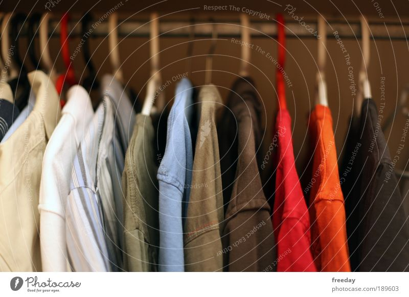 ::: You thin shirt! ::: Closet Shirt Cupboard Clothing stairways Tidy up Arrangement Hanger Attract Design Retail sector colored out T-shirt combination Fashion
