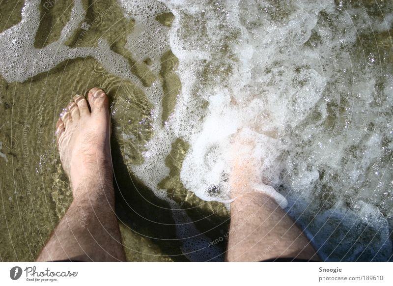 Holidays at last Joy Vacation & Travel Summer Summer vacation Beach Ocean Masculine Legs Feet 1 Human being Water North Sea Going To enjoy Soft Brown Moody