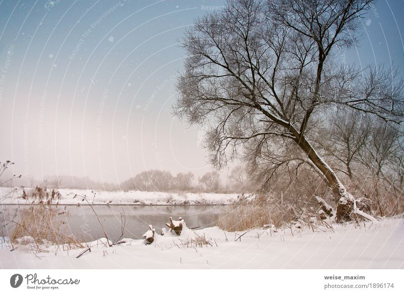 Snowfall over the river. Winter misty cloudy snowy weather Sky Nature Vacation & Travel Plant White Tree Landscape Clouds Far-off places Winter Forest Meadow Grass Snow Freedom Tourism
