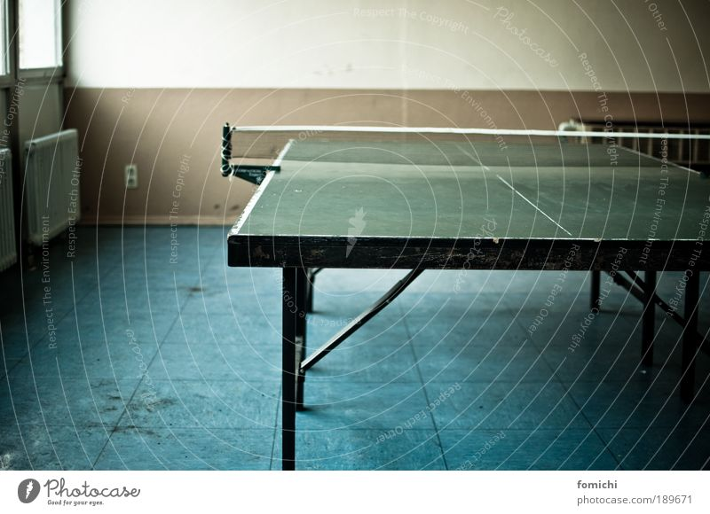 procrastination sport Joy Leisure and hobbies Playing Table tennis Table tennis table Fight Work and employment Break concentric Colour photo Interior shot