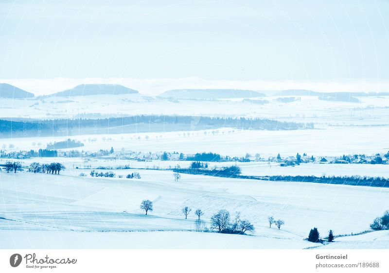 Sky Tree Blue Winter Far-off places Cold Snow Mountain Landscape Ice Field Germany Fog Horizon Frost