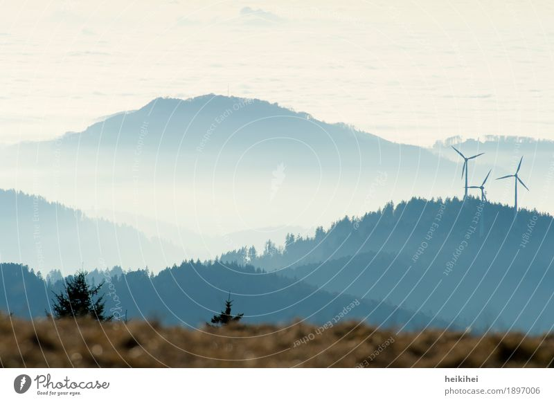 Land under ... Landscape Sky Autumn Winter Fog Tree Grass Meadow Forest Mountain Kandel Blue Brown Gray White Happy Loneliness Relaxation Cold Moody Tourism