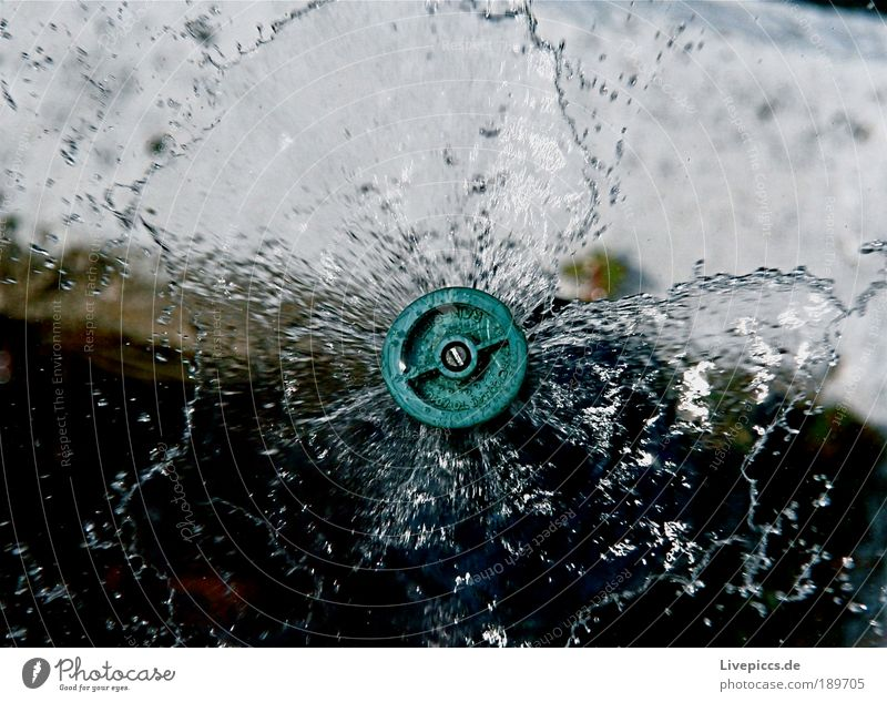 sprinkler system Water Drops of water Movement Fluid Wet Colour photo Exterior shot Deserted Morning Worm's-eye view Downward Day