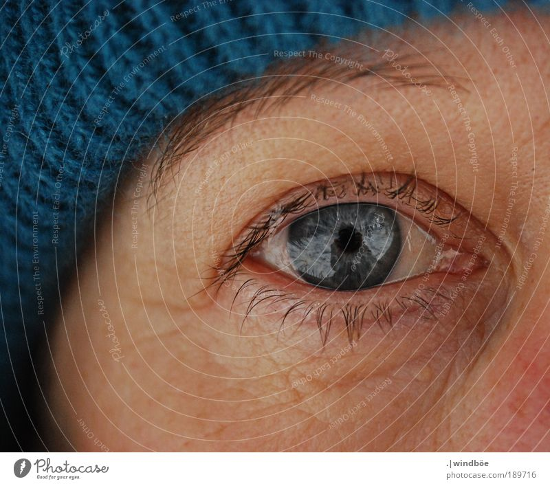 winter view Woman Adults Life Skin Head Face Eyes Eyelash 45 - 60 years Old Observe Relaxation Looking Happy Cold Feminine Blue Black Joie de vivre (Vitality)