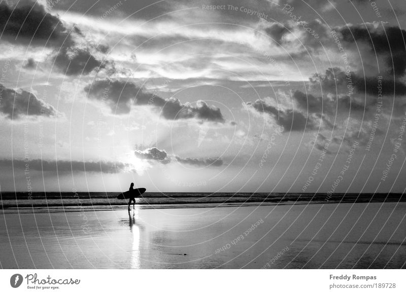 After Surfing Human being Nature Joy Beach Sports Landscape Leisure and hobbies Tourism Black & white photo