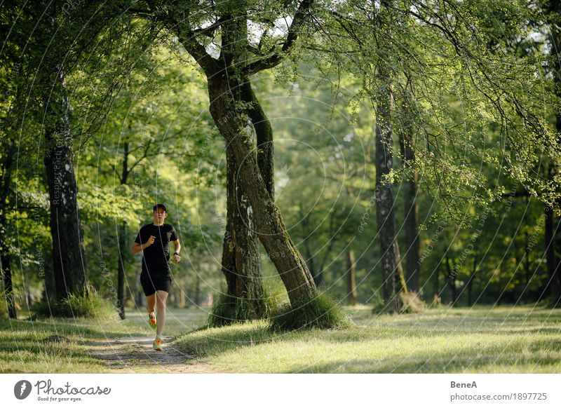 Running in the park Summer Jogging Nature Park Fitness Jump Action Athlete Sportsperson Runner Walking Running sports Grass Green Healthy Landscape Tree Forest