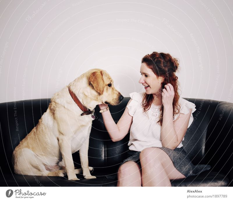 dialogue Joy Flat (apartment) Sofa Young woman Youth (Young adults) 18 - 30 years Adults T-shirt Skirt Red-haired Long-haired Pet Dog Labrador To talk