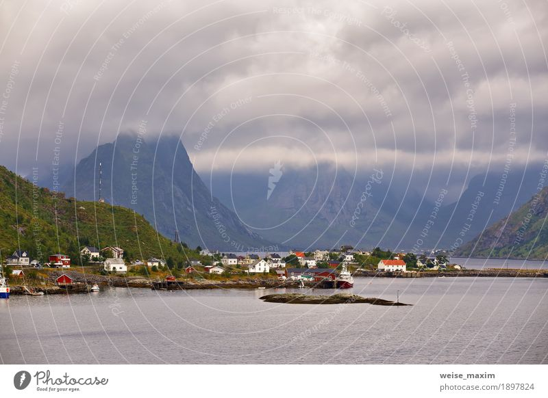 Norway village Reine on a fjord. Nordic cloudy summer Vacation & Travel Tourism Far-off places Freedom Summer Ocean Island Mountain