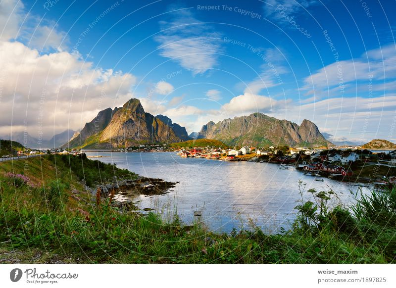 Norway village Reine on a fjord. Nordic cloudy summer day. Sky Nature Vacation & Travel Summer Ocean Landscape Clouds House (Residential Structure) Mountain Coast Freedom Tourism Rock Trip Europe Island