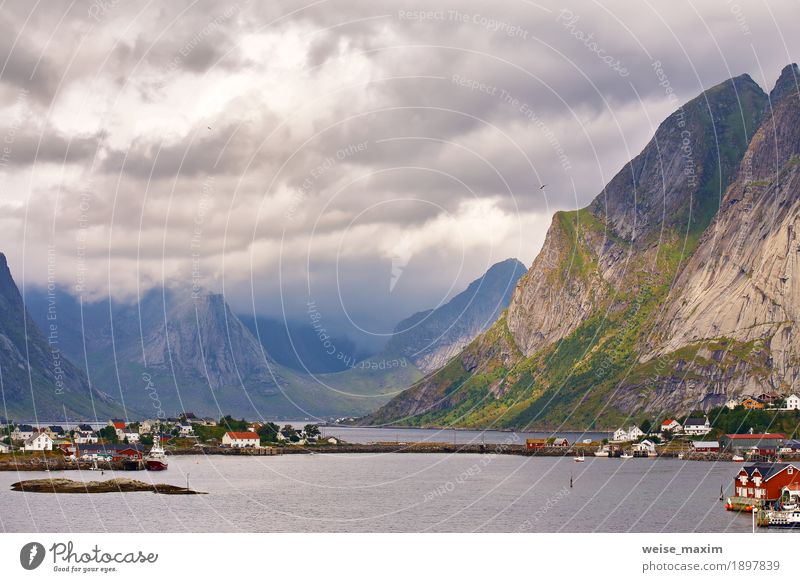 Norway village Reine on a fjord. Nordic cloudy summer Vacation & Travel Tourism Trip Summer Summer vacation Ocean Island Mountain Living or residing
